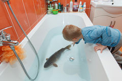 Little boy and carp in the bathtub. Royalty Free Stock Photography