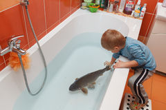 Little boy and carp in the bathtub. Stock Photo