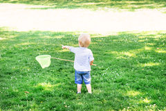 Little boy catching butterflies with a scoop Stock Images
