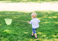 Little boy catching butterflies with scoop Stock Image
