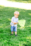 Little boy catching butterflies with a scoop Stock Photos