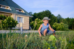Little boy catching insects with a net Royalty Free Stock Photos