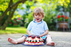 Little boy celebrating his birthday in home's garden with big ca. Little adorable boy celebrating his birthday in home's garden with big cake Stock Image