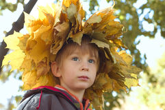 Little boy with chaplet of yellow leaves Royalty Free Stock Photos