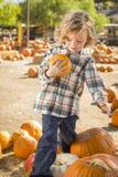Little Boy che tiene la sua zucca ad una toppa della zucca Immagine Stock