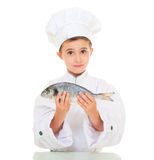 Little boy chef in uniform. Presenting  dorado fish isolated on white Stock Images