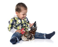 Little boy and chicken Stock Image
