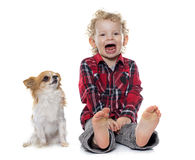 Little boy and chihuahua crying Royalty Free Stock Image