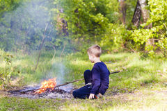 Little boy child in forest playing with bonfire. Little boy child in forest playing with bonfire Royalty Free Stock Image