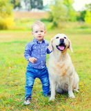 Little boy child and Golden Retriever dog on grass. In park royalty free stock images