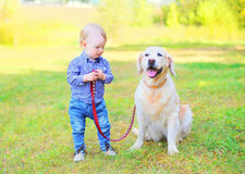 Little boy child with Golden Retriever dog on grass. In sunny day stock image