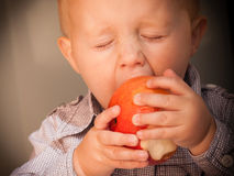 Little boy child kid eating apple fruit at home Royalty Free Stock Photo