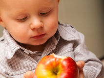 Little boy child kid eating apple fruit at home Royalty Free Stock Photos