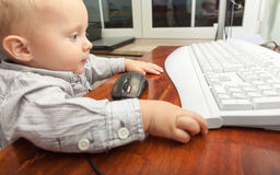 Little boy child kid playing on the computer Royalty Free Stock Photos