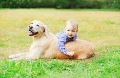 Little boy child playing with Golden Retriever dog. On grass stock photo
