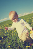 Little boy child in summer picnic with basket of fruit Royalty Free Stock Photos