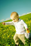 Little boy child in summer picnic with basket of fruit Royalty Free Stock Photography