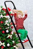 Little boy and Christmas tree Royalty Free Stock Photo