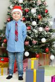 Little boy with Christmas Tree Stock Images