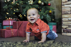 Little boy at the Christmas tree Royalty Free Stock Image