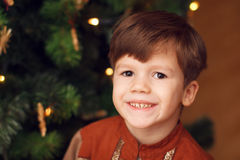 Little boy with christmas tree Royalty Free Stock Images