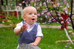 Little boy clapping in the park Stock Photo