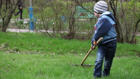 The little boy cleans leaves rake. stock video footage