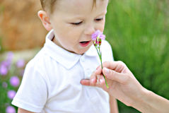 The little boy on a clearing with a flower Stock Photography