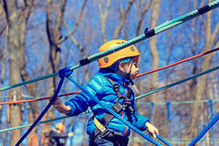 Little boy climbing in adventure activity park Royalty Free Stock Photo