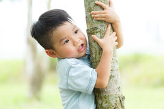 Little boy climbing up with tree bark Stock Photos