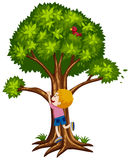 Little boy climbing up the tree. Illustration Royalty Free Stock Images