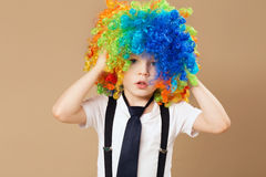 Little boy in clown wig smilling and having fun. Happy clown boy with large colorful wig. Birthday boy. Little clown boy with colorful hair. Positive emotions Stock Image