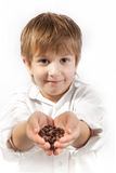 Little boy with coffee beans Royalty Free Stock Images