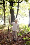 Little Boy con la mano dura que camina en el bosque Fotografía de archivo libre de regalías