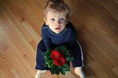 Little Boy con las margaritas del Gerbera Fotos de archivo