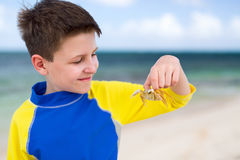 Little boy with a crab Royalty Free Stock Image