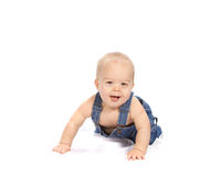 Little Boy Crawling. Crawling baby boy in overalls isolated on white royalty free stock image