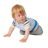 Little boy crawling on white Stock Photos