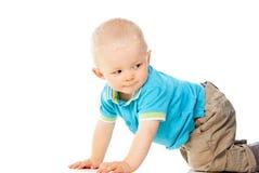 Little boy crawls Royalty Free Stock Photography