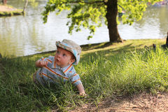 Little boy creeping Stock Photography