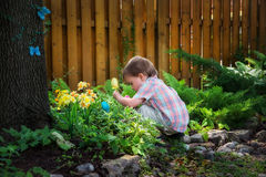 Little Boy Crouching Down Looking for Easter Eggs Royalty Free Stock Image