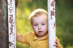Little boy crying Royalty Free Stock Photos