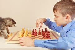 Little boy with cute kitten plays chess. Little boy with a cute kitten plays chess Stock Image