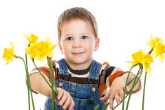 Little boy with daffodils Stock Photography