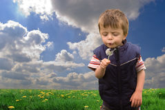 Little boy and dandelion. A little boy in a green field with blue sky, holding a dandelion and blowing it's seeds Royalty Free Stock Image