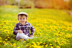 Little boy in a dandelion field Royalty Free Stock Image