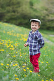 Little boy in a dandelion field Stock Photography