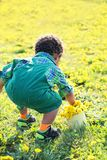 Little Boy In Dandelions Royalty Free Stock Images
