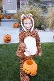 Little Boy, das auf Halloween Trick-oder-behandelt Lizenzfreies Stockfoto