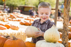Little Boy, das seine Kürbise an einem Kürbis-Flecken erfasst Stockfotos